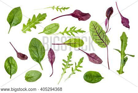 Different Leaves Of Various Leafy Vegetables (chard, Spinach, Arugula) Isolated On White Background