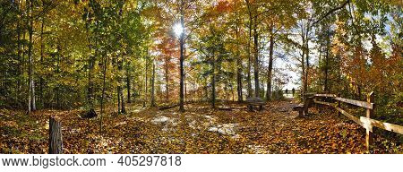 Panoramic View Of The Natural Parkland With Park Bench And Fence In Autumn
