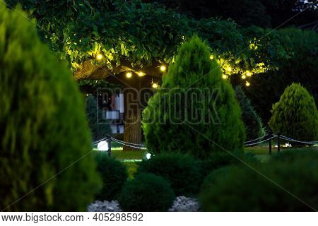 Illumination Holiday Lights With Electric Lantern Lamp Garland Of Warm Light Bulbs On Tree Branches