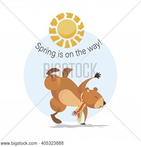 Funny Marmot. Groundhog Having Fun. Happy Groundhog Day. Sunny Day. Spring Is On Way. Marmot, Sun.