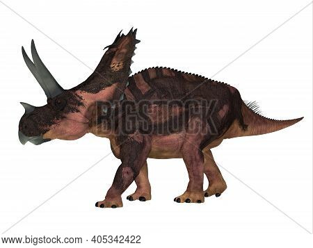 Agujaceratops Side Profile 3d Illustration - The Ceratopsian Herbivorous Dinosaur Agujaceratops Live
