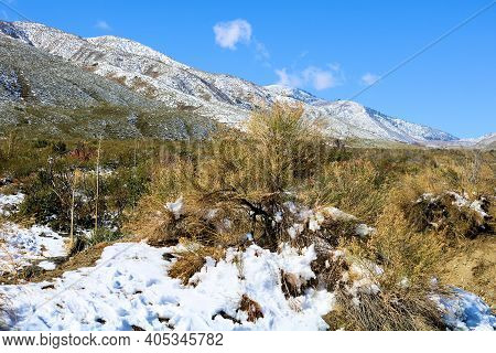 Sage Plants Surrounded By Snow And Mountain Ranges Taken On The High Desert Plateau At Arid Badlands
