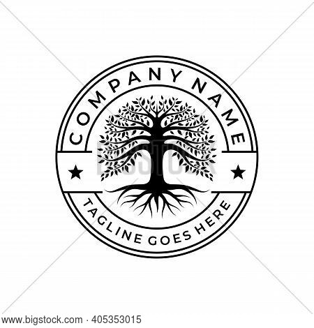 Tree Of Life Stamp Seal Emblem Oak Banyan Logo Design Template