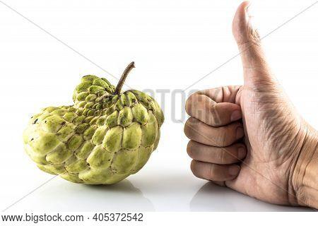 Hand Like Sugar Apple ( Custard Apple, Annona, Sweetsop,cherimoya Fruit )