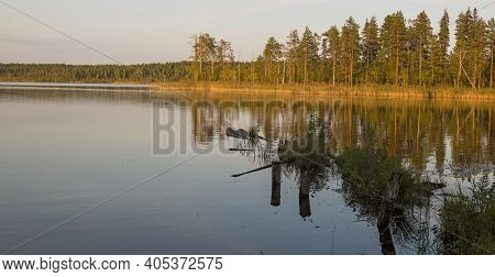 Els Lake At Sunset. Beautiful Autumn Lake At Sunset In The Arkhangelsk Region, Russian Federation.