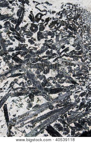 Gabbro Pegmatite Rock