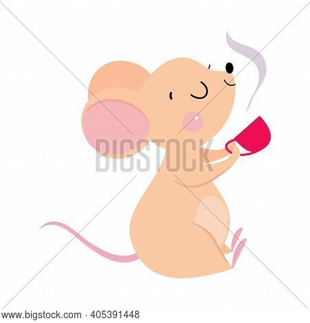 Funny Mouse With Pointed Snout And Rounded Ears Drinking Aromatic Tea Vector Illustration