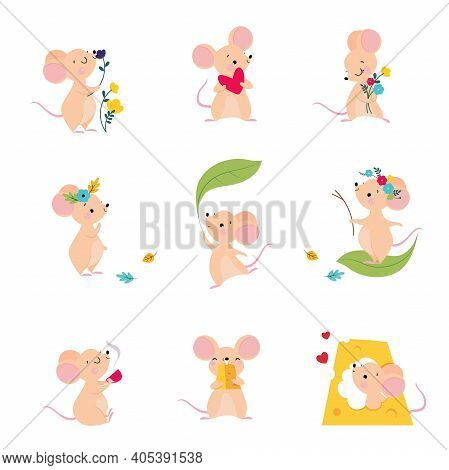 Cute Mouse With Pointed Snout And Rounded Ears Holding Heart And Nibbling Cheese Slab Vector Set