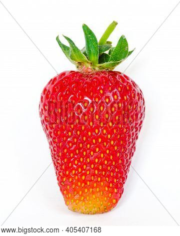 Studio Shot One Strawberry Isolated On White Background With Copy Space