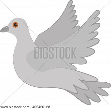 Gray Pigeon On A White Background. Dove In Flight. A Symbol Of Love And Devotion, Peace, Vector.