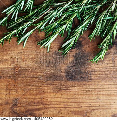 Fresh Rosemary Herb On A Wooden  Board. Top View Rosemary With  Copy Space.