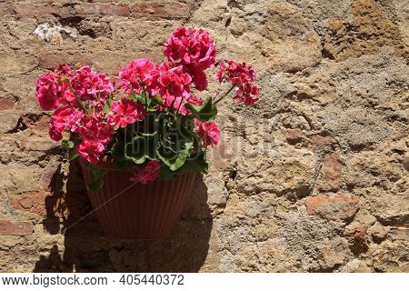 Volterra (si), Italy - April 25, 2017: A Typical Tuscany Brick Wall With Geranius Flowers In Volterr