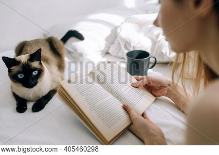 Youngyoung Girl Reads A Book In Bed In A Bright Bedroom Next To A Cat And A Cup Of Coffee Girl Reads