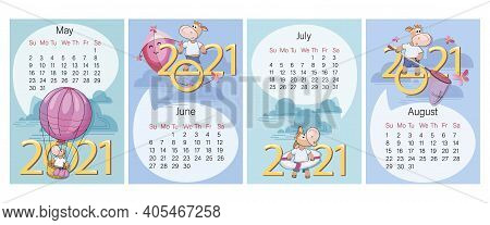 Calendar 2021. Spring And Summer Months. Set. Funny Calf On Background Of Large Numbers.