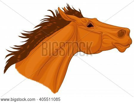 Portrait Of A Chestnut Thoroughbred Horse With Its Head Up. Running Stallion Laid Its Ears Back. Vec
