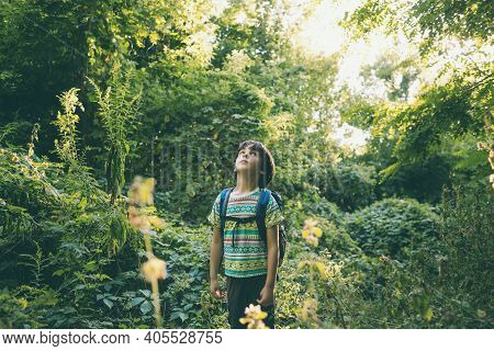 A Boy With A Backpack Walks Through The Forest, A Child Explores Wildlife, A Kid Stands Alone Among