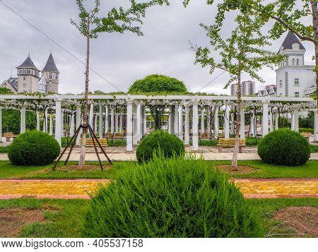 August 2018 - Yantai China: Lusg Pergola Covered In Grape Vines At The Changyu Vineyard Estate, The