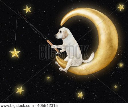 A Dog Is Catching Gold Stars With A Fishing Rod On The Comfortable Moon.