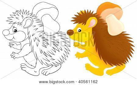 spiny hedgehog carrying a mushroom, color and black-and-white outline illustrations on a white background poster