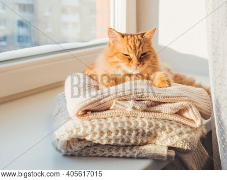 Cute Ginger Cat Sleeps On Pile Of Cable-knitted Sweaters. Winter Sunset. Fluffy Pet On Window Sill W