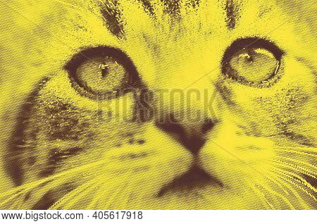 Portrait Of Cute Kitten Cat In Black And Yellow Retro Halftone Abstract Illustration.