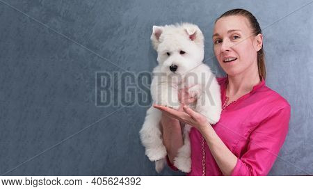 Young Girl Groomer Shows Off West Highland White Terrier Puppy After First Grooming Procedures. Funn
