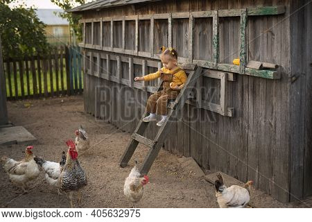 A Child In Overalls Sits High On The Stairs And Feeds The Chickens Corn.  Funny Girl On The Farm Tak
