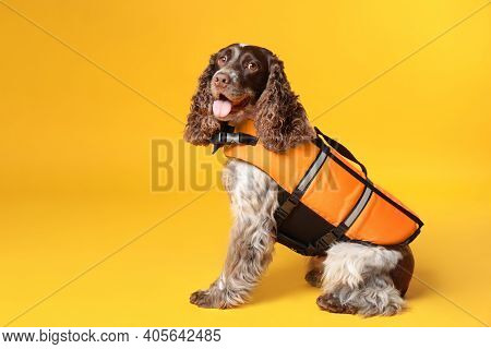 Dog Rescuer In Life Vest On Yellow Background
