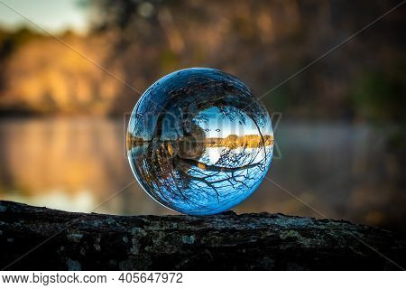 A Lensball Sits Atop A Tree Limb, Revailing The Inverted Image Of A Tree And Its Reflection.