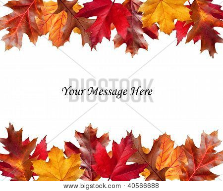 Fall Leaves Above And Below A Message
