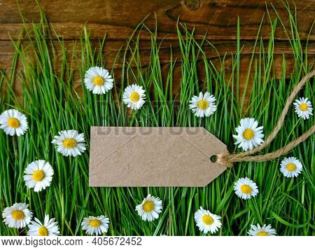 Sale Price Reduction Tag For Discount On Spring Grass & Daisy Flowers Background. Summer Sale Advert