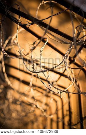 Barbed Wire Fence Detail With Shallow Depth Of Field.