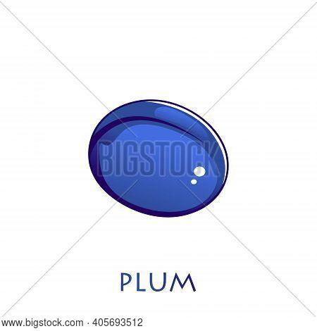 Vector Fruit Plum. Bright Picture Of Ripe Plum