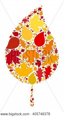 Floral Leaf Composition Icon Organized For Fall Season. Raster Floral Leaf Mosaic Is Organized From