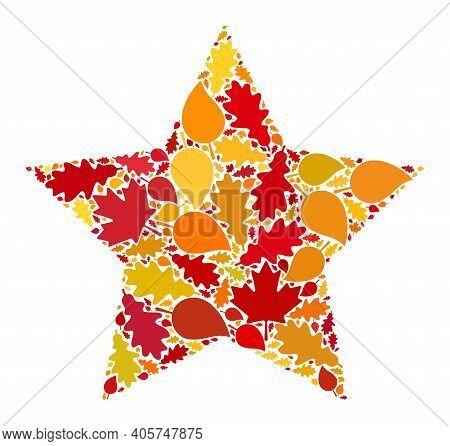 Star Mosaic Icon Designed For Fall Season. Raster Star Mosaic Is Designed Of Random Fall Maple And O