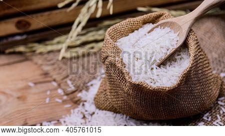 Organic Gereal Rice. Fall Harvest Cornucopia In Autumn Season.