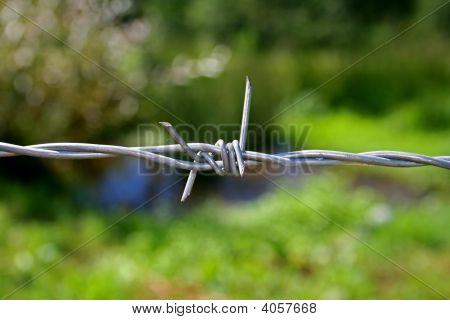 a barbed wire on green and blue background poster