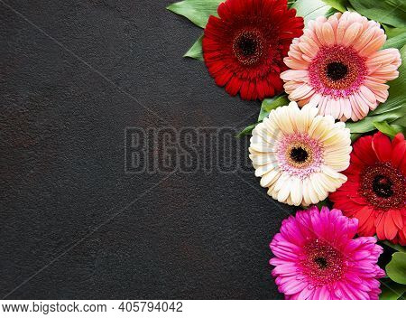 Bright Gerbera Flowers On A Black Concrete Background. Frame Of Flowers, Top View
