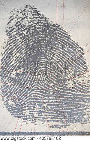 Securing A Fingerprint In Forensics, Collecting Evidence Of A Crime