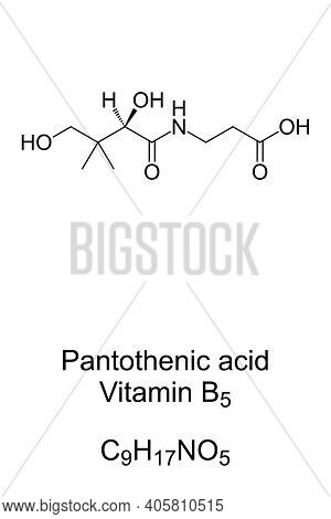 Pantothenic Acid, Vitamin B5, Chemical Formula And Skeletal Structure. An Essential Nutrient To Synt