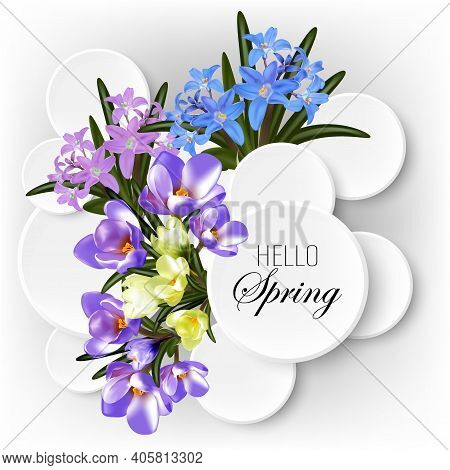 Delicate Flowers, Blossoming Petals, Primroses, Crocuses And Chionodox On A Spring Background, Frame