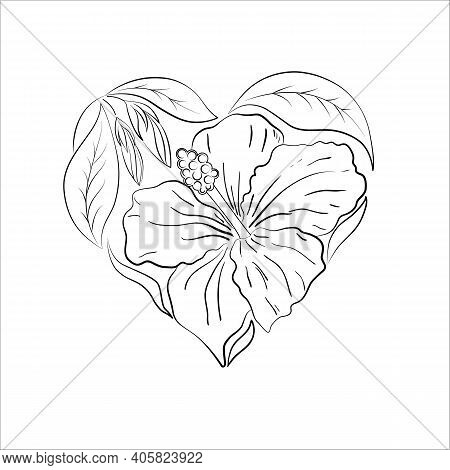 Black And White Contour Composition In The Shape Of A Heart, Hibiscus Flowers And Leaves, Isolated O