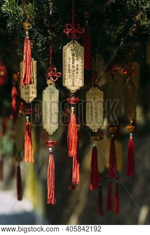 Buddhist Wish Ribbons And Golden Plates Hanging From Pine Tree In Taipei, Taiwan, With Chinese Writi