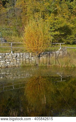 The Autumn Landscape And The Woodland Ponds Near Slivia By Duino In Triest Province, Friuli-venezia