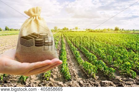 Money Bag In The Hand Of The Farmer On The Background Of Agricultural Crops. Profit From Agribusines