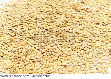 Many Winter Melon Wax Gourd Seeds Full Frame View On Isolated White Background