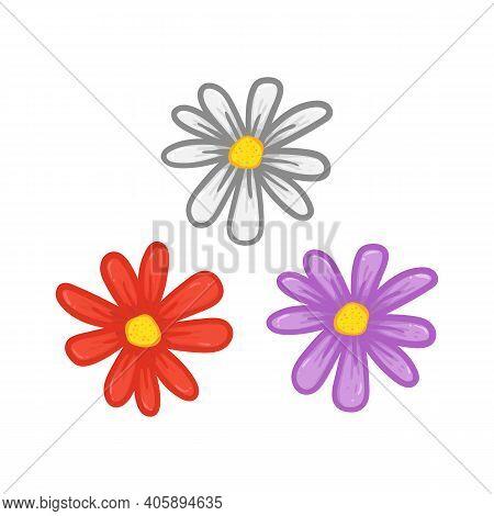 Set Cartoony Daisy Flower Petal Hand Drawing Illustration