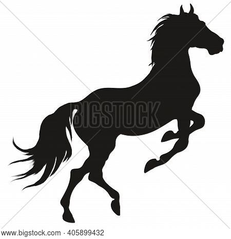Black Silhouette Of A Rearing Horse. Prancing Stallion Pricked Up Its Ears. Vector Design Element Fo