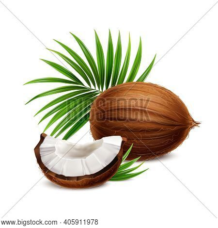 Coconut Fresh Whole And Segment With White Flesh Closeup Realistic Composition With Palm Frond Leave