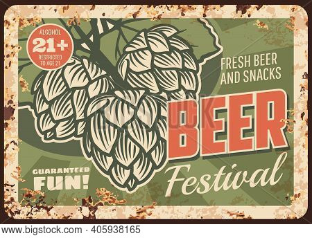 Beer Festival Rusty Metal Plate, Vector Draught Craft Beer Brewing Traditions And Hop Leaves, Brewer